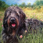 Pet Portraits by Brianna