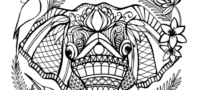 Coloring Page Printable Etsy Craft Party Etsy Calgary